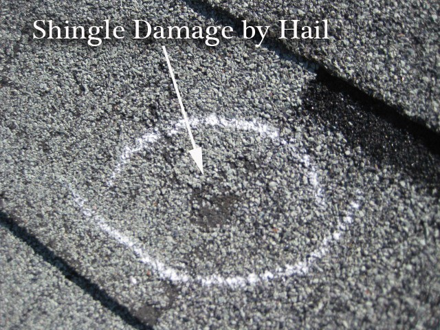Shingle Hail Damage