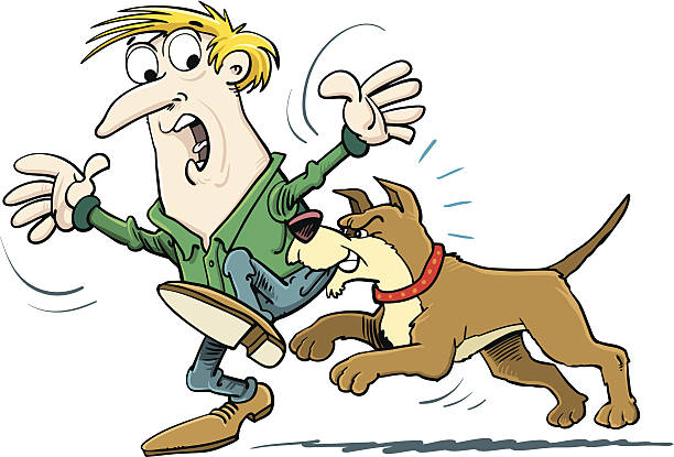 Dog biting a man on the leg